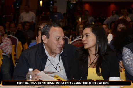 Beatriz Mojica Morga, ex candidata a Gobernadora de Guerrero. Consejo Nacional. Foto tomada del PRD.