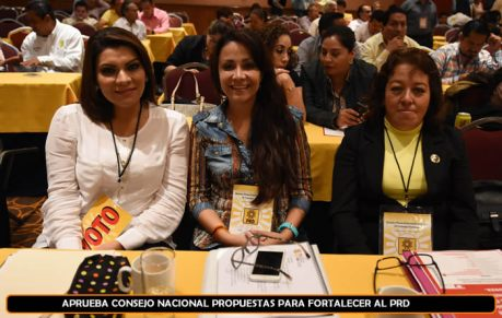 Diputada Federal de Sonora: Loreina Valles. Consejo Nacional. Foto tomada del PRD.